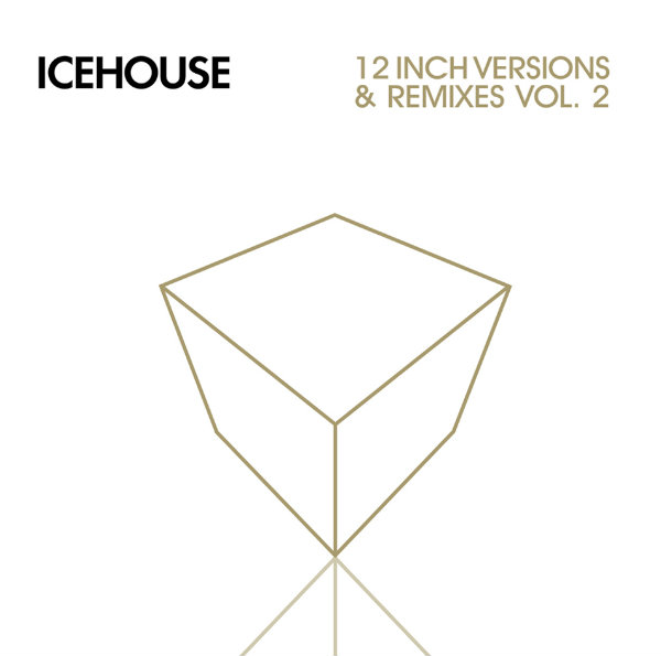 12 Inch Versions & Remixes – Vol. 2